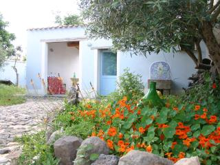 Perfect 1 bedroom Cottage in Riola Sardo - Riola Sardo vacation rentals