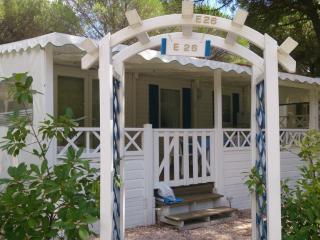 Cozy 2 bedroom Bungalow in Puget-sur-Argens - Puget-sur-Argens vacation rentals