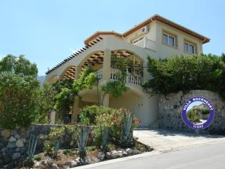Perfect Villa with Internet Access and A/C - Ilgaz vacation rentals