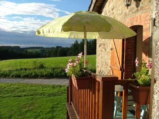 Romantic Cottage Livradois Forest. 10K Brioude - Champagnac-le-Vieux vacation rentals