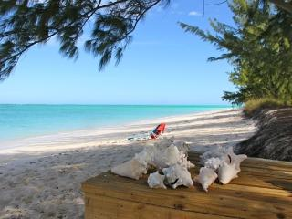 Beautiful 3 bedroom Villa in North Caicos - North Caicos vacation rentals