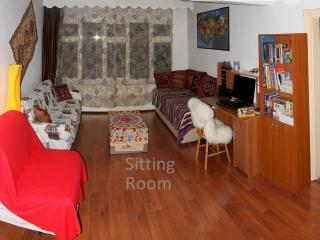Comfortable Condo with Internet Access and Wireless Internet - Aksaray vacation rentals