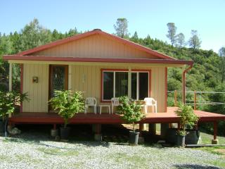 Mountain Ranch-Mountain Top Retreat - Mountain Ranch vacation rentals