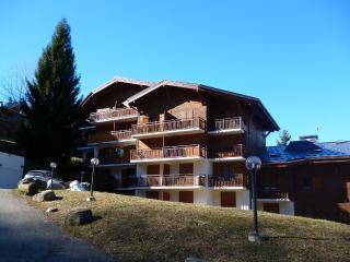 Cozy Saint Gervais les Bains Studio rental with Internet Access - Saint Gervais les Bains vacation rentals