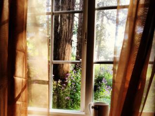 RockyDell Retreat - Crestline vacation rentals