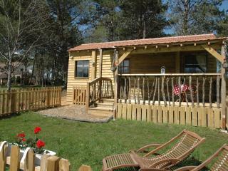 Le Petit Gite at La Blanquette near Sarlat - Sarlat-la-Canéda vacation rentals