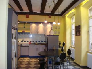 GITE AUX TANNEURS DE COLMAR - Colmar vacation rentals