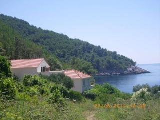 Maja House - Bratinja Luka, Korcula, Croatia - Dalmatia vacation rentals