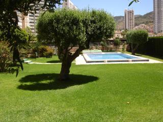 Los Olivos - Benidorm vacation rentals