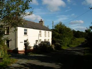 Charming 2 bedroom Carmarthen Cottage with Internet Access - Carmarthen vacation rentals