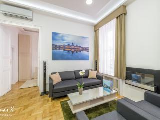 Grand Nador - luxury, fireplac - Budapest vacation rentals