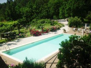 Bright 1 bedroom Spoleto Cottage with Internet Access - Spoleto vacation rentals