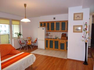 Comfortable 2 bedroom Apartment in Gdynia with Parking Space - Gdynia vacation rentals