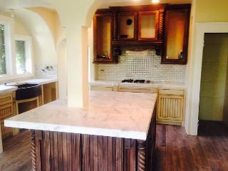 Histioric area 100yr old 4bd/3ba with pool!! - Roseville vacation rentals