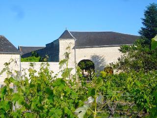 Gîte de charme en Val de Loire - Ligre vacation rentals