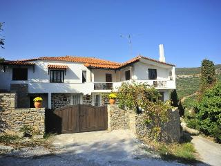 Euboea: Large Holiday Villa in Zarakes, Evia. - Nea Styra vacation rentals