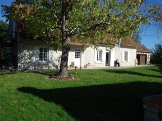 Bright 5 bedroom House in Cheverny - Cheverny vacation rentals