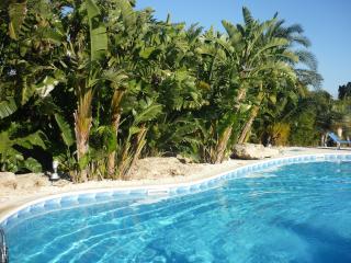 Nice 2 bedroom Fanusa Condo with Internet Access - Fanusa vacation rentals