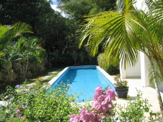 2 bedroom Apartment with Internet Access in Holetown - Holetown vacation rentals