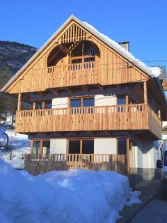 First floor, marvelous views over lake, balcony - Bohinjsko Jezero vacation rentals