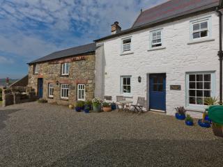 Bwthyn Gwe Stone Cottage - Saint Davids vacation rentals
