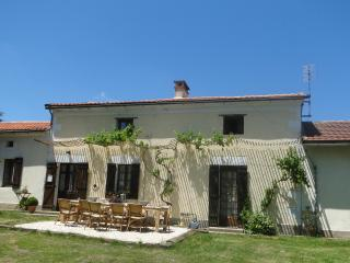 Big  farmhouse- big pool-Pizza oven-Courtyard- BBQ - Jaure vacation rentals