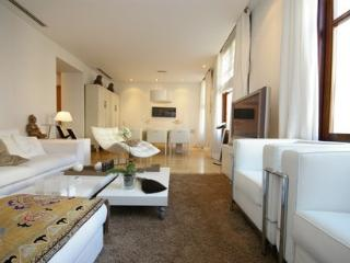 The Vinatea Apartment - Valencia Province vacation rentals