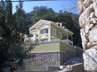 Spacious Villa with A/C and Cleaning Service - Turunc vacation rentals