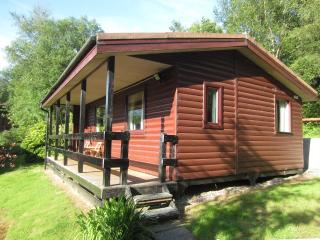 Lovely Cabin with Balcony and Washing Machine - Loch Eck vacation rentals