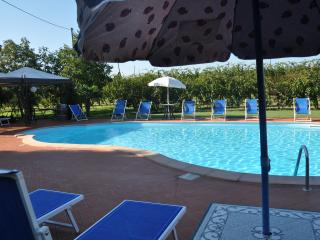 Nice House with A/C and Shared Outdoor Pool - Castel Bolognese vacation rentals