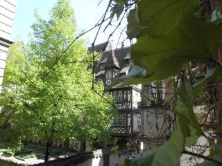 Appartement charme et confort - Strasbourg vacation rentals