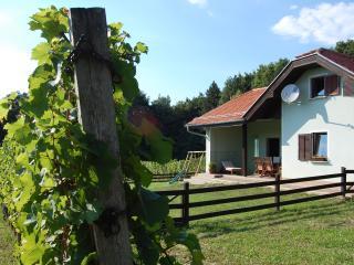 Beautiful 3 bedroom Cottage in Moravske Toplice with Swing Set - Moravske Toplice vacation rentals