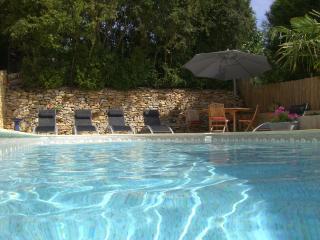 Mas Cavaillé - Sarlat-la-Canéda vacation rentals