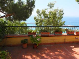 Wonderful terrace over the sea - Ventimiglia vacation rentals