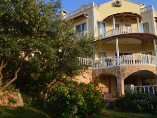 Nice Villa with Internet Access and Dishwasher - Kalkan vacation rentals
