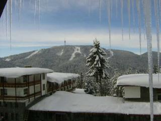 Bright 3 bedroom Apartment in Pamporovo with Hot Tub - Pamporovo vacation rentals