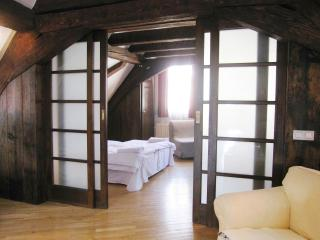 Ferdinand - Prague vacation rentals