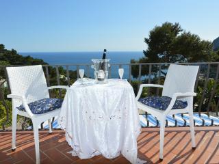 Sea View Property - Capri vacation rentals
