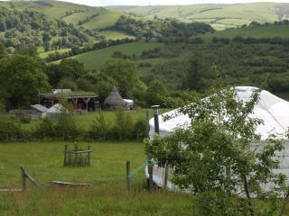 Blue yurt - Llanidloes vacation rentals