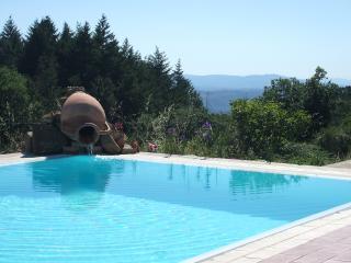 PIERFANTINI - San Gusme vacation rentals