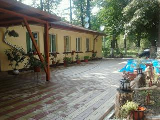 9 bedroom Guest house with Internet Access in Prahova County - Prahova County vacation rentals