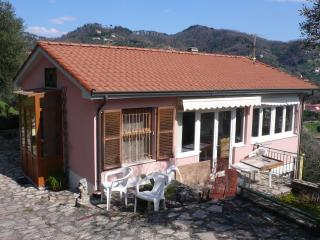 Villetta a San Terenzo in splendido parco di ulivi - San Terenzo vacation rentals