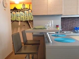 City center apartment for 4 - Belgrade vacation rentals