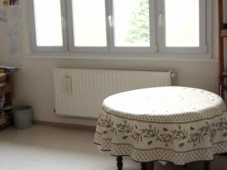 grand F2  meublé 15min CV Nancy jardin - Nancy vacation rentals