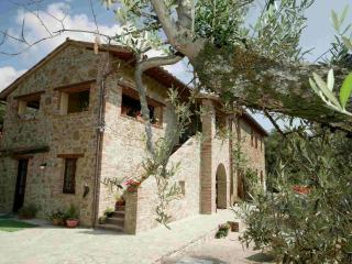 Romantic 1 bedroom Apartment in Tavernelle - Tavernelle vacation rentals