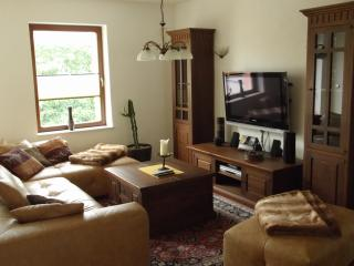 Bright 2 bedroom Rostock Condo with Internet Access - Rostock vacation rentals