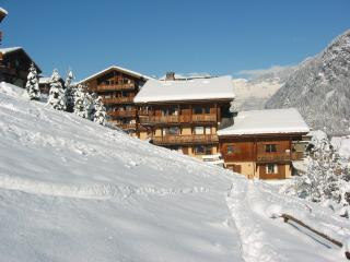 Residence Le Grand Balcon, Les Houches - Les Houches vacation rentals