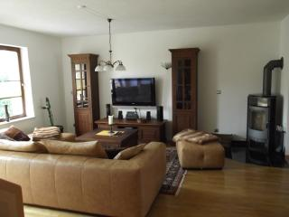 Nice Condo with Internet Access and Dishwasher - Rostock vacation rentals