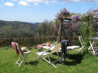 Lovely House with Linens Provided and DVD Player - Camaiore vacation rentals