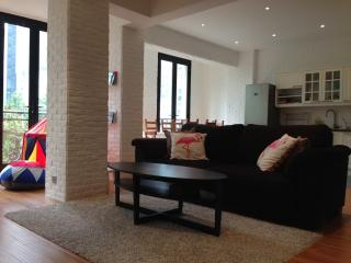 Nice Condo with Internet Access and A/C - Macau vacation rentals